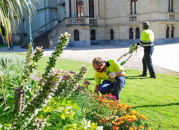 trabajo-jardineria-indesa-2010